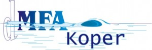 dmfakp-logo