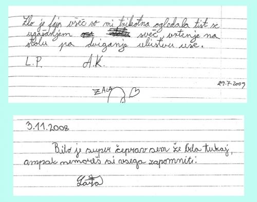 vtisi_in_mnenja_20131021_1973245736_0